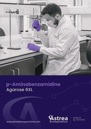 p-Aminobenzamidine Brochure