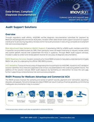 Audit Support Solutions