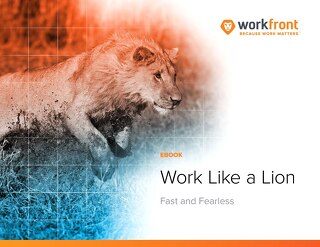 Work Like a Lion: Fast and Fearless
