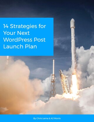 14 Strategies for Your Next WordPress Post Launch Plan