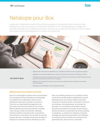 Netskope Pour Box - French