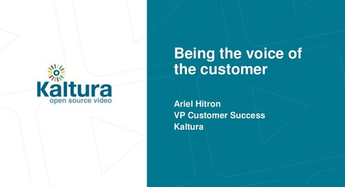 Being The Voice Of The Customer