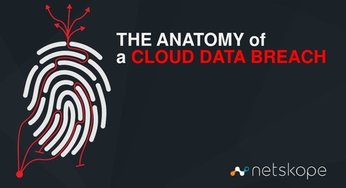 The Anatomy of a Cloud Data Breach