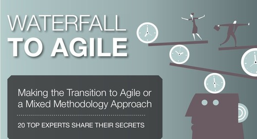 Transitioning From Waterfall to Agile: Lessons From 20 Experts