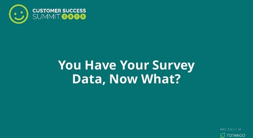 You Have Your Survey Data, Now What?