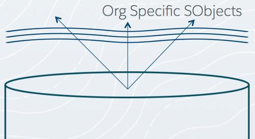SOQL for the SQL Developer
