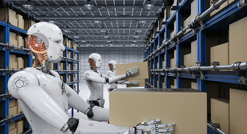 The Future Warehouse: Robotics and Automation