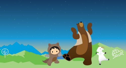 Introducing: Inside the Salesforce Ecosystem