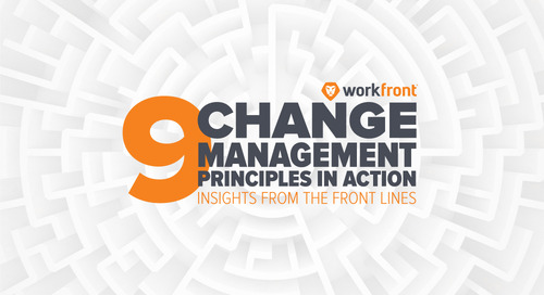 9 Change Management Principles in Action: Insight from the Front Lines