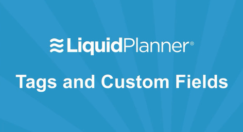 LiquidPlanner Tags and Custom Fields