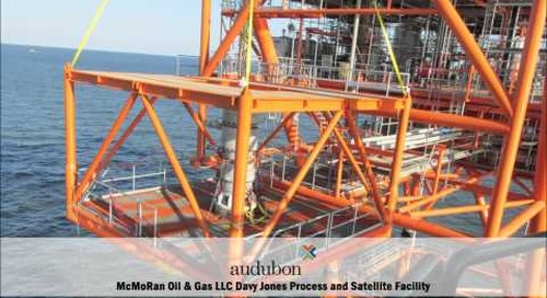 Offshore Project and Services