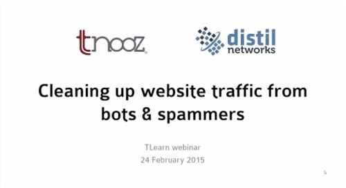How to clean up travel website traffic from bots and spammers?