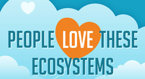 Cloud App Ecosystems — Why They Should Matter To You [Infographic]