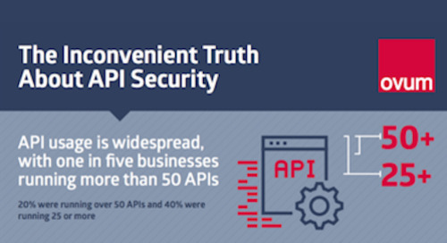 Infographic: The Inconvenient Truth About API Security