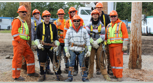 Canadian Contractor Improves Estimating & Field Tracking