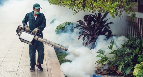 Is Zika still a threat to travelers in 2017?