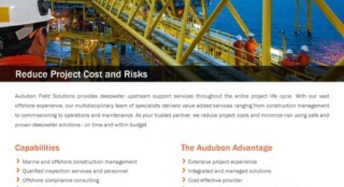 Deepwater Offshore Services